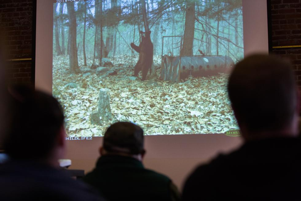 Attendees of the presentation on black bears in the area by Ralph Taylor, the MassWildlife Connecticut Valley District Supervisor, watch a series of still images of a black bear scratching its back against a tree in the Great Hall at the Discovery Center in Turners Falls, Saturday, January 23. Recorder Staff/Matt Burkhartt - Matt Burkhartt |