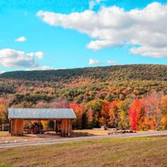 'Party in the Hollow' to benefit Mount Grace land trust