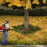Leaf blowers flagged as polluters, possible health threat