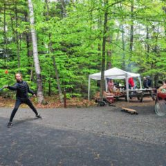 Report: New England losing 65 acres of forestland per day