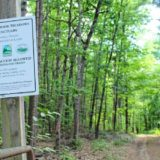 Northfield accessible trail expected to open in June