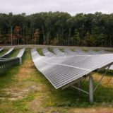 Northampton solar policy change snags on trees