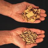 Environmental groups oppose state's biomass incentives