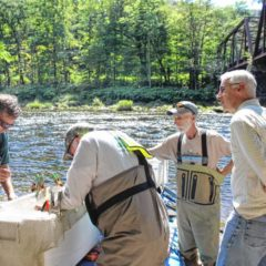 Local group, biologists begin study of trout in Deerfield River