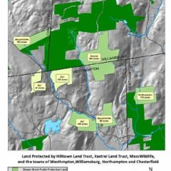 Conservation partnership protects 1,000 acres of forestland in 4 towns