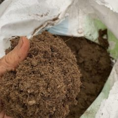 Time to say bye-bye to peat moss