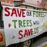 Judge dismisses Wendell State Forest Alliance members' lawsuit